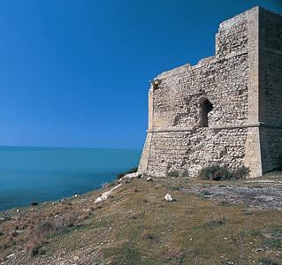 Foto della torre San Carlo